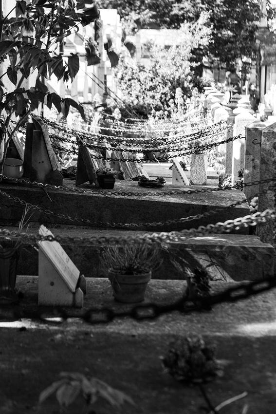 Cimetiere Saint Pierre 0225 Au Cimetière Saint Pierre à Marseille