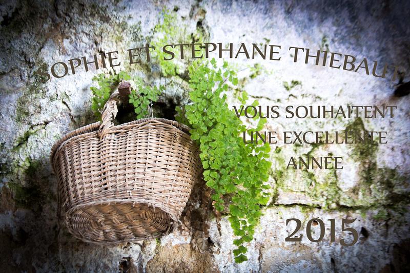 Sophie et Stéphane Thiébaut vous souhaitent une bonne année